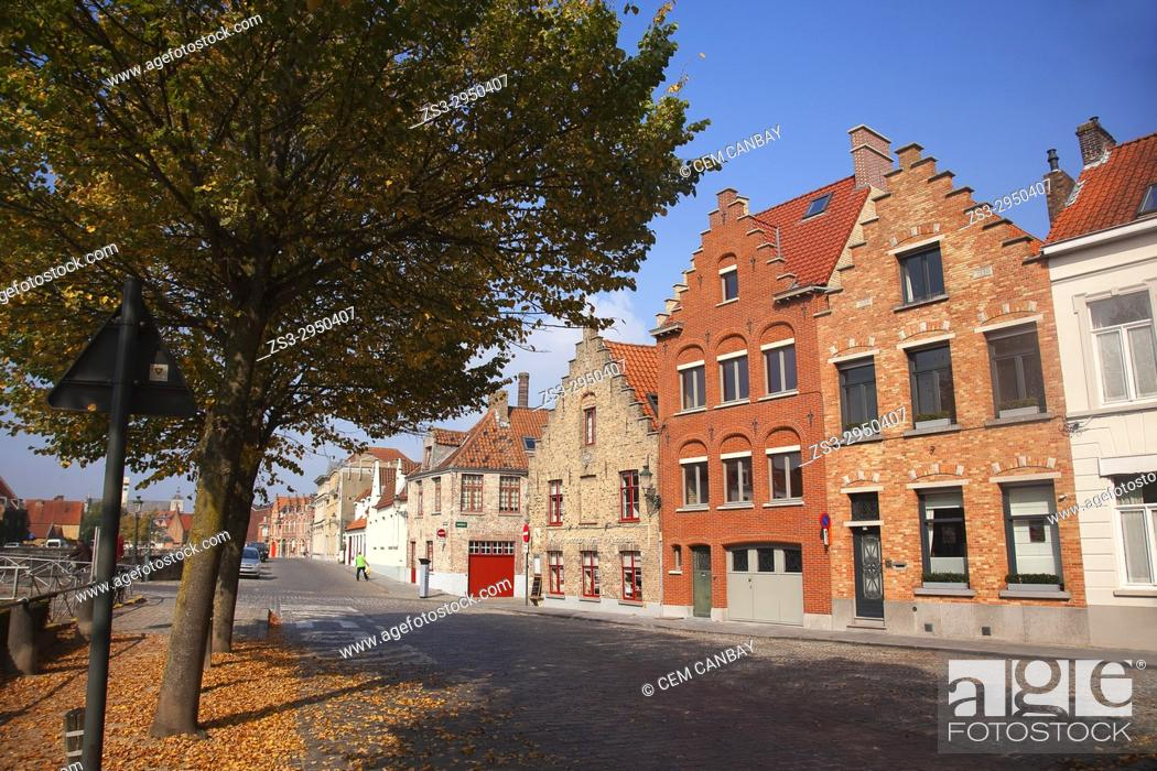 Imagen: Autumn leaves and traditional houses in the city center, Bruges, West Flanders, Belgium, Europe.