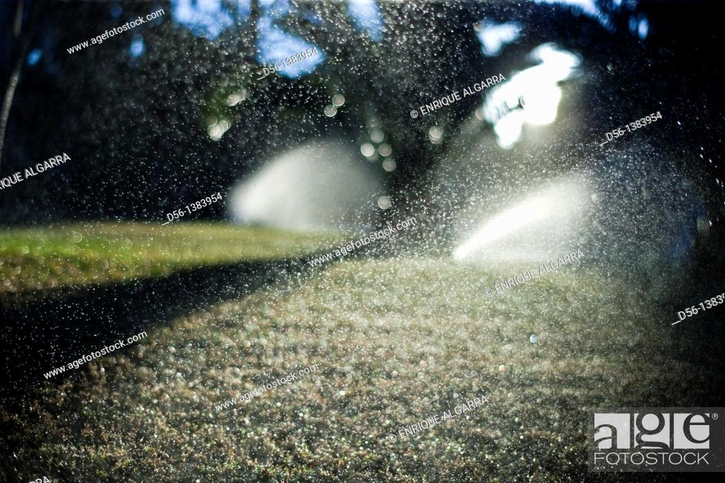 Stock Photo: irrigation.