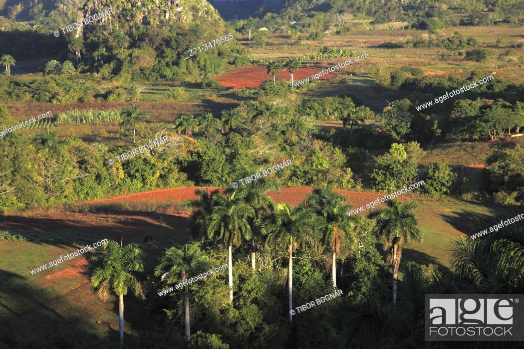 Stock Photo: Cuba, Vinales Valley, Valle de Vinales, landscape, scenery, .
