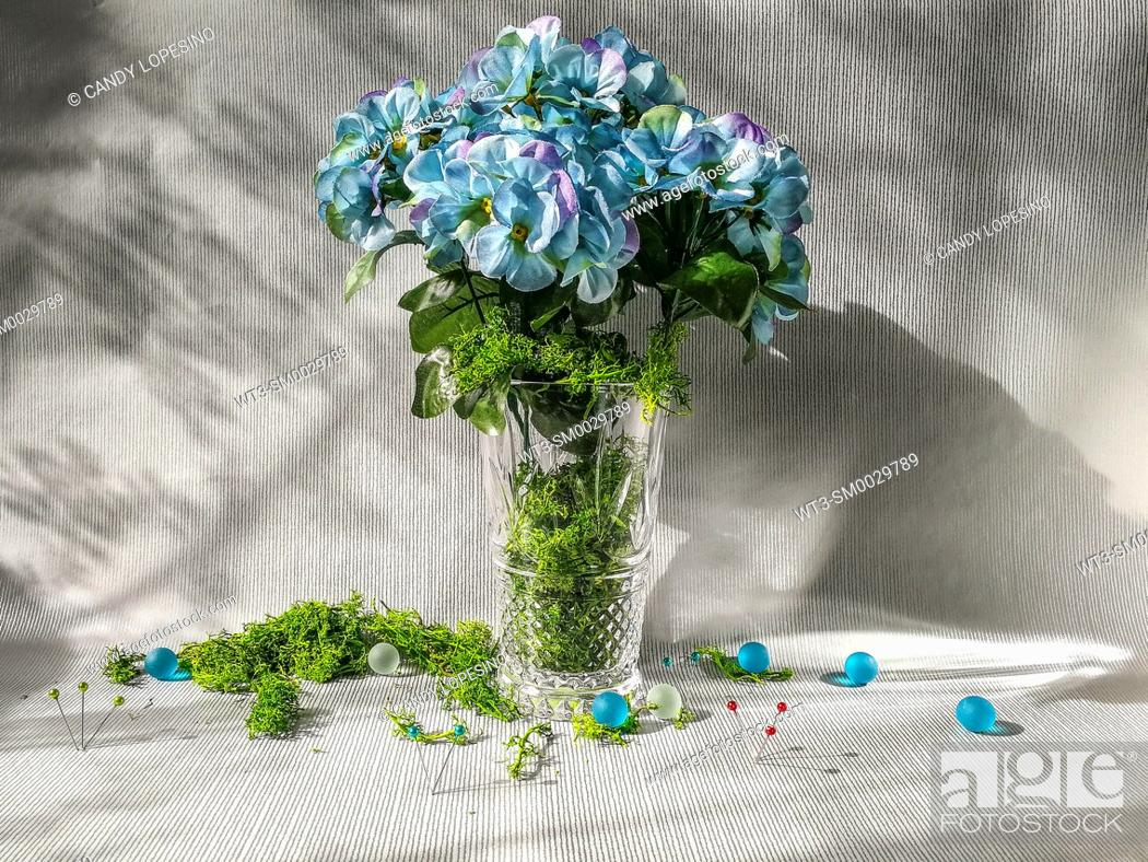 Stock Photo: Blue hydrangeas and natural green moss on silver background.