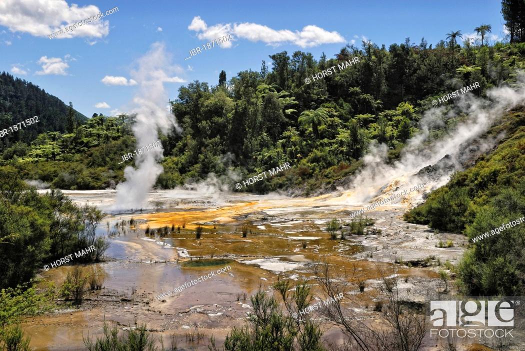 Stock Photo: Artists Palette, Orakei Korako Cave and Thermal Park, Hidden Valley, Taopo-Rotorua, North Island, New Zealand.