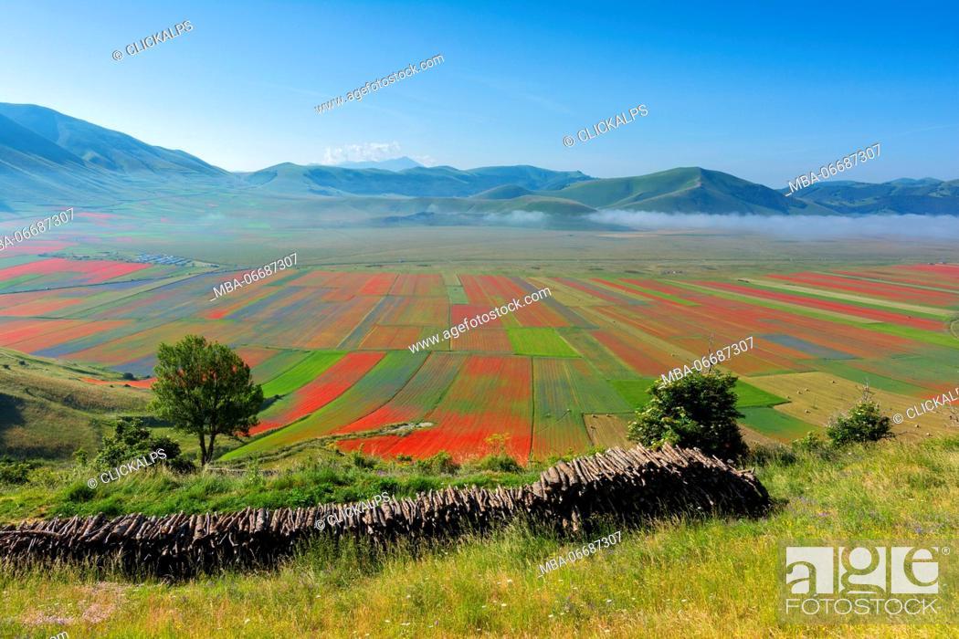 Stock Photo: Europe, Italy, Umbria, Perugia district, Castelluccio of Norcia.