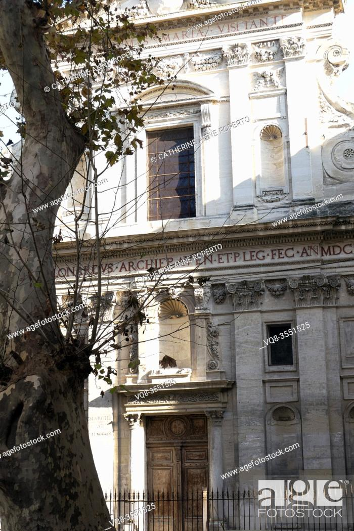 Imagen: The curving line of an old plane tree repeats the elegant carving on the Baroque Church of the Visitation and Revolutionary coal market, Avignon, Provence.