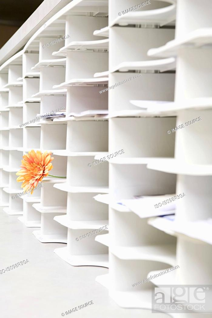 Stock Photo: Rows of office cubby holes with a flower sticking out of one.