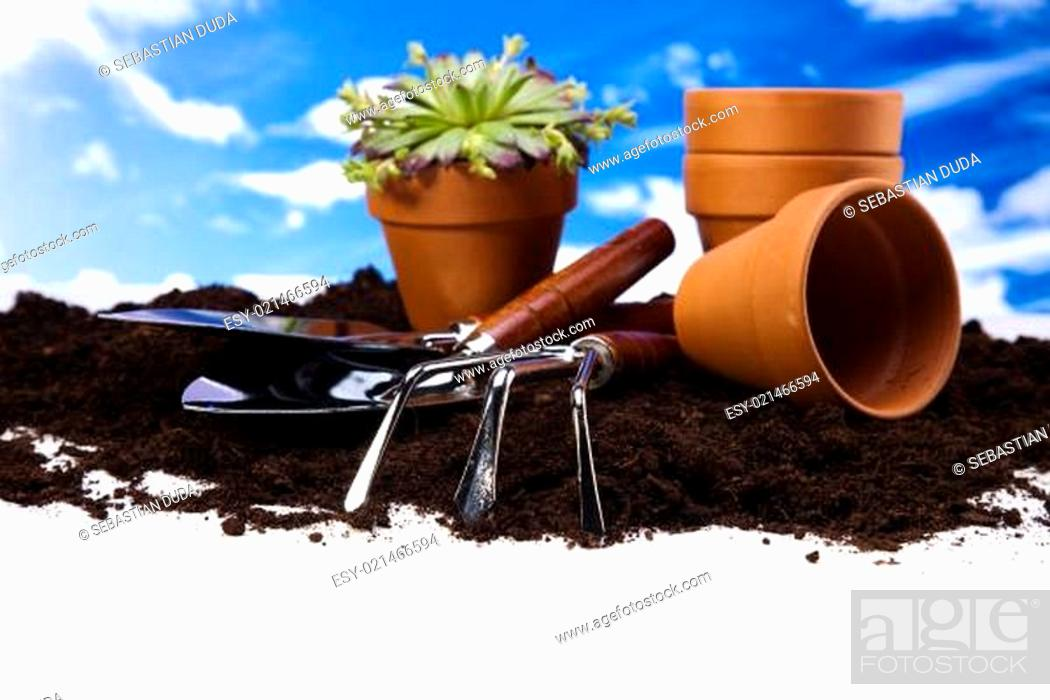 Stock Photo: Gardening equipment on green plants.