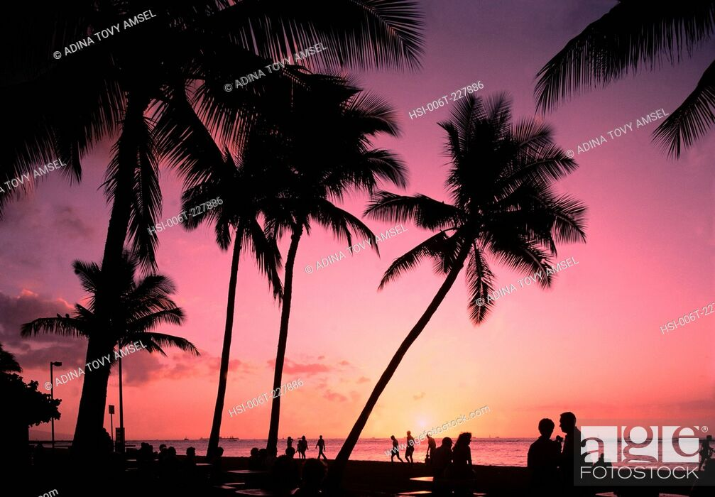 Stock Photo: Thailand. Phuket Island. Sunset over waterfront with people and palm trees silhouetted.