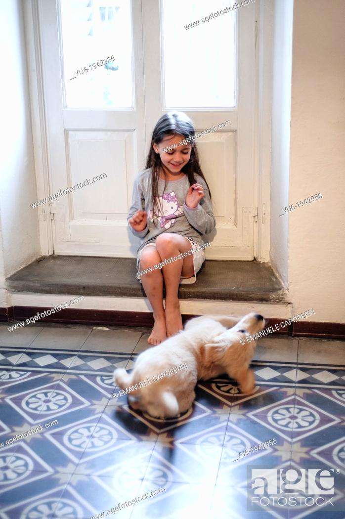Stock Photo: Golden Retriever puppy and little girl at the window of the living room are exchanging caresses.