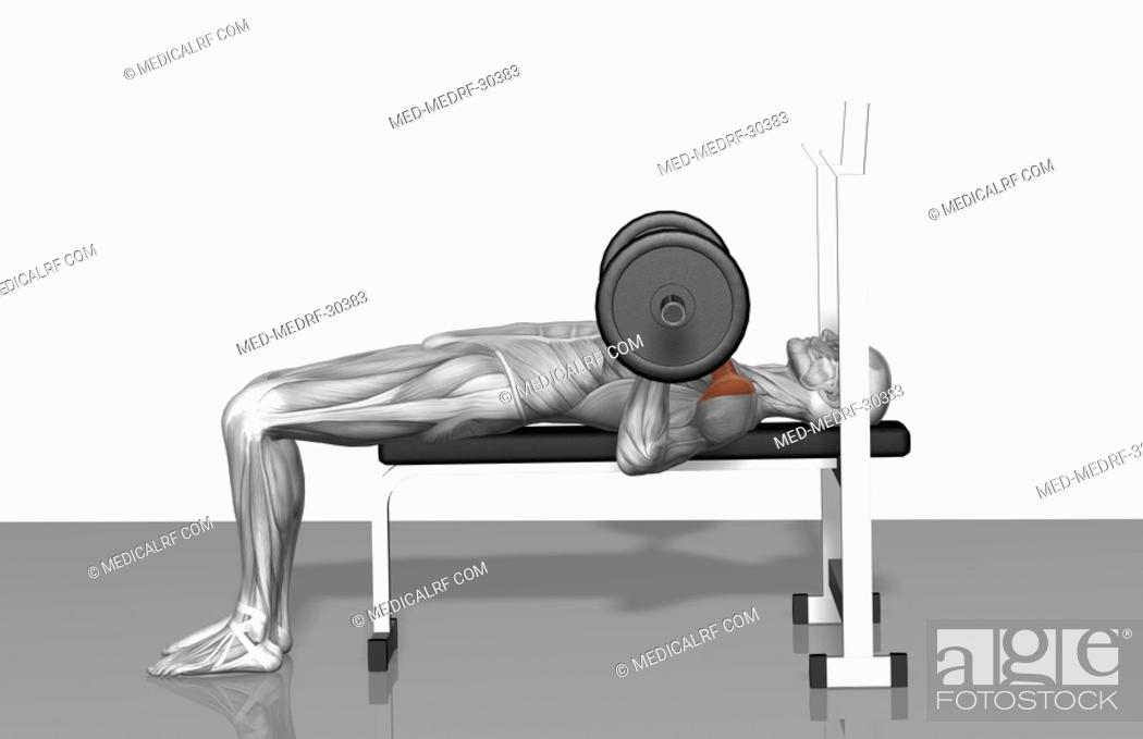 Stock Photo: Bench press Part 2 of 2.