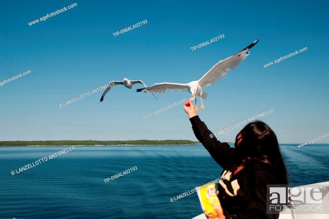 Stock Photo: North America, Canada, Ontario, Manitoulin Island, Lake Huron.
