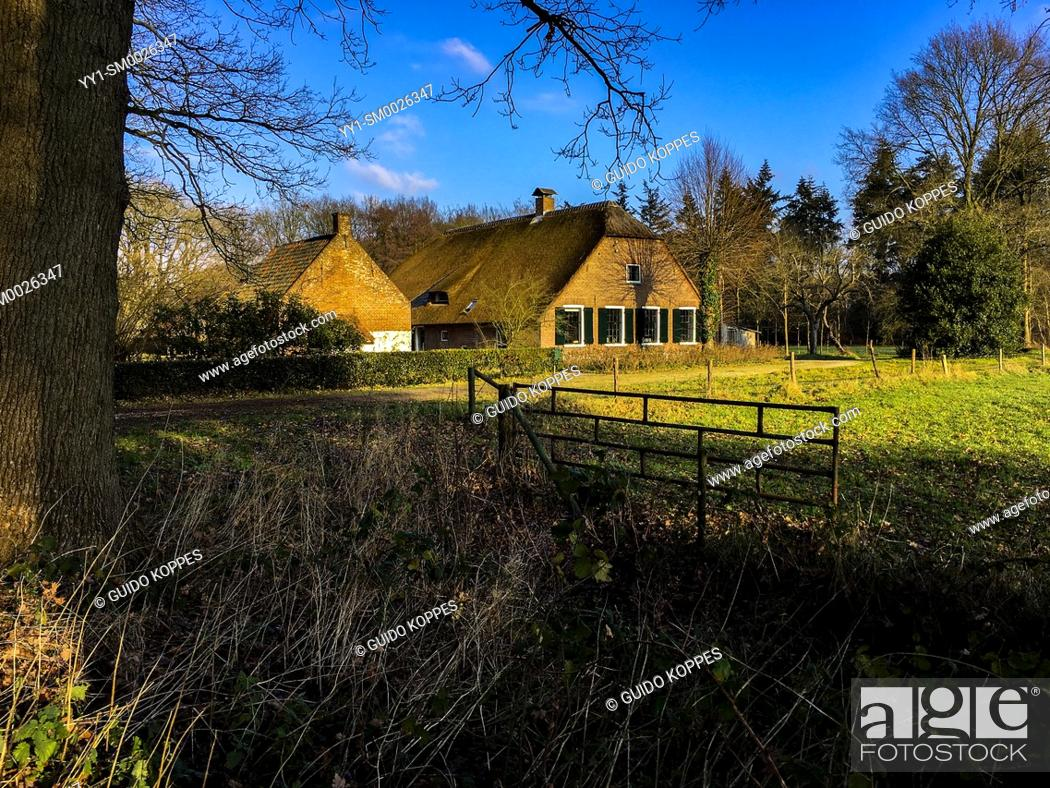 Imagen: Bilthoven, Netherlands. Old fashioned farmhouse with stables and barn inside an old forrest with meadows during a sunny, fall season morning.