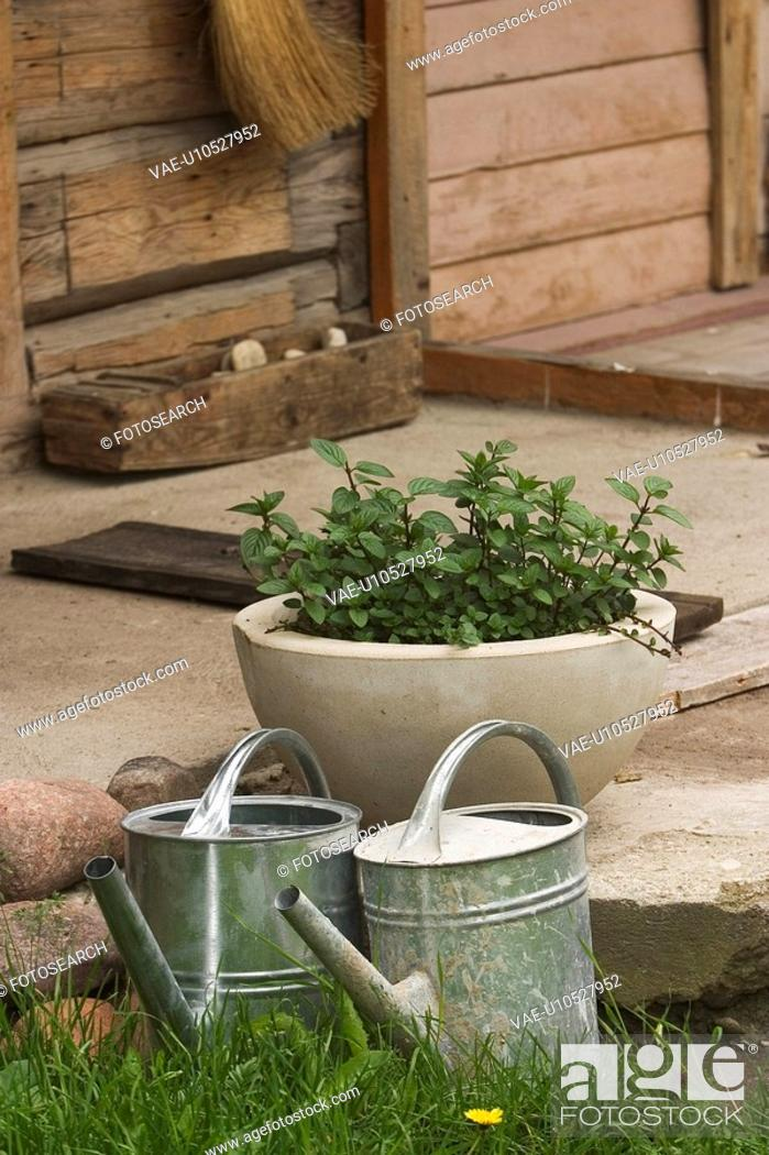 Stock Photo: Water, Sprinkler, Watering Can, Front Or Back Yard, Gardening.