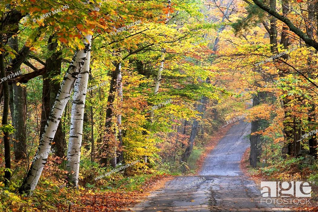 Stock Photo: Autumn scenery along road in the Sugar Hill area of New Hampshire.