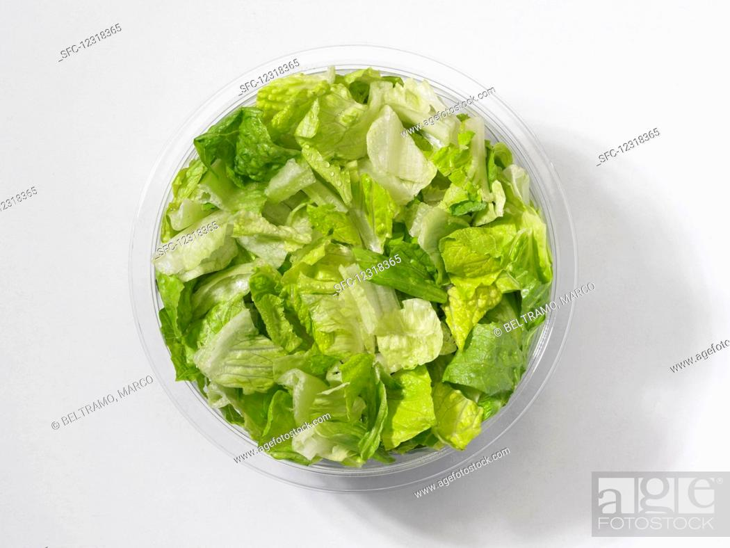Stock Photo: Fresh green lettuce leaves in a plastic bowl in front of a white background (seen from above).