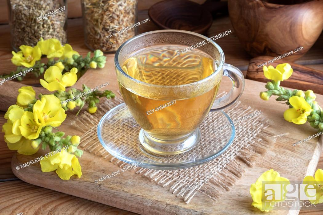 Stock Photo: A cup of herbal tea with fresh blooming mullein.