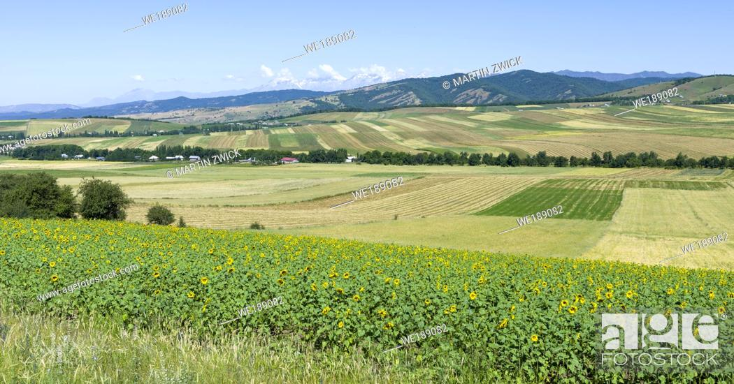Stock Photo: Landschaft in den Huegeln vor den Bergen der Fergana Kette (Ferganskij xrebet) im Ferghanatal an der Grenze zu Usbekistan.