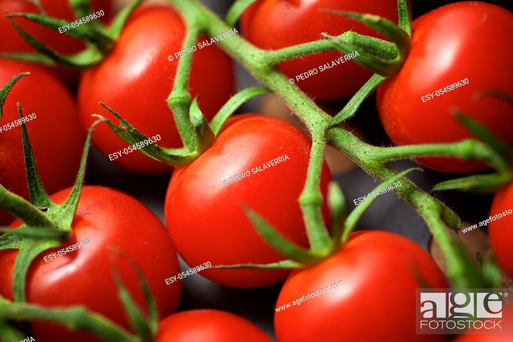 Stock Photo: Cherry tomatoes on a wood table.