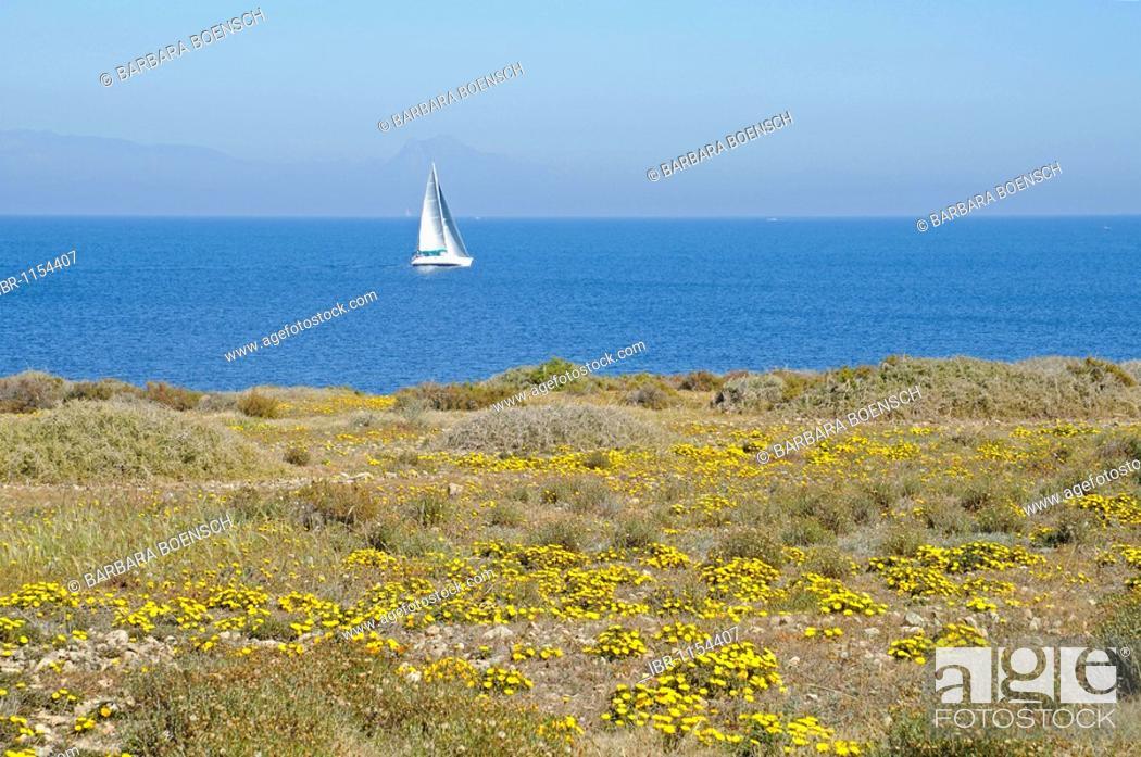 Stock Photo: Single sail boat, coast, sea, Tabarca, Isla de Tabarca, Alicante, Costa Blanca, Spain, Europe.
