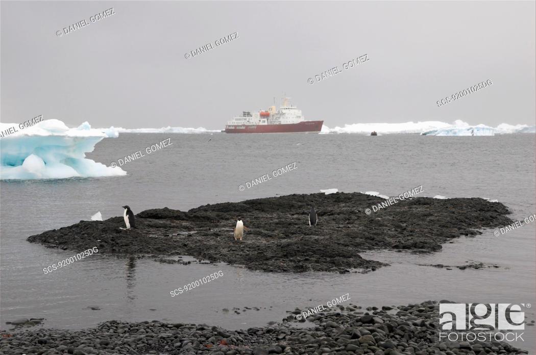 Imagen: The MV Polar Star, waiting for tourists to return, Brown Bluff, Antartic Peninsula RR.