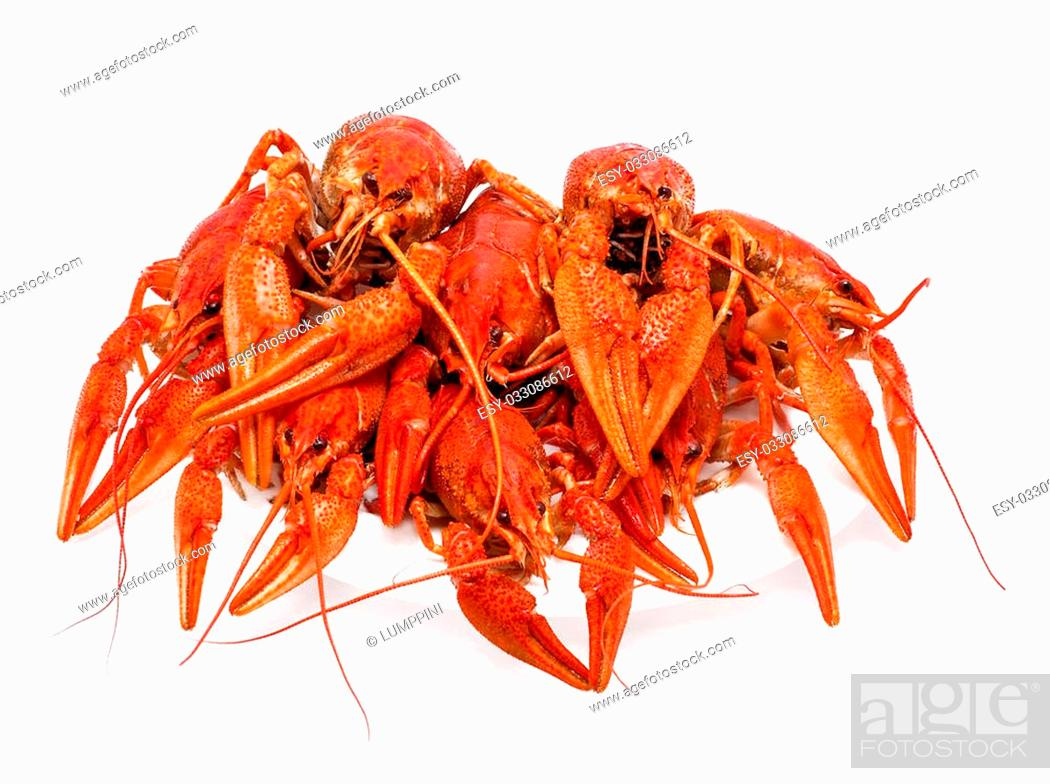 Stock Photo: appetizing red boiled crawfish on a white background.