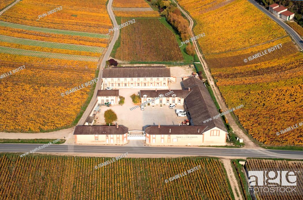 Stock Photo: France, Champagne-Ardenne, the Marne ( 51 ), Epernay, wine storehouse of champagne Moët and Chandon.