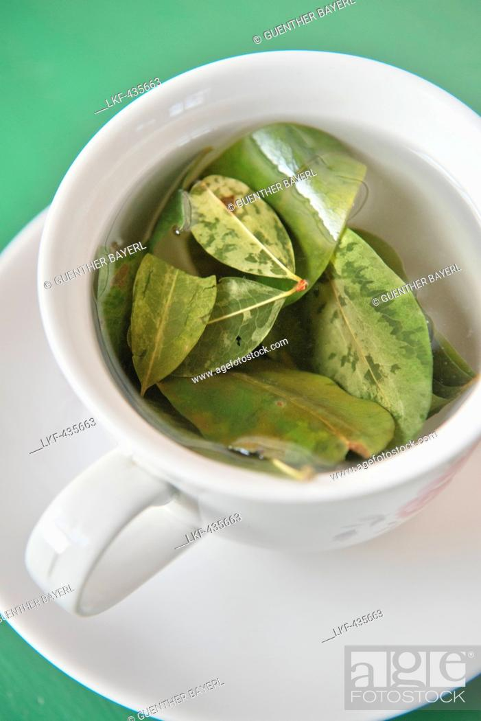 Mate de Coca, coca tea, Cusco, Cuzco, Peru, Andes, South