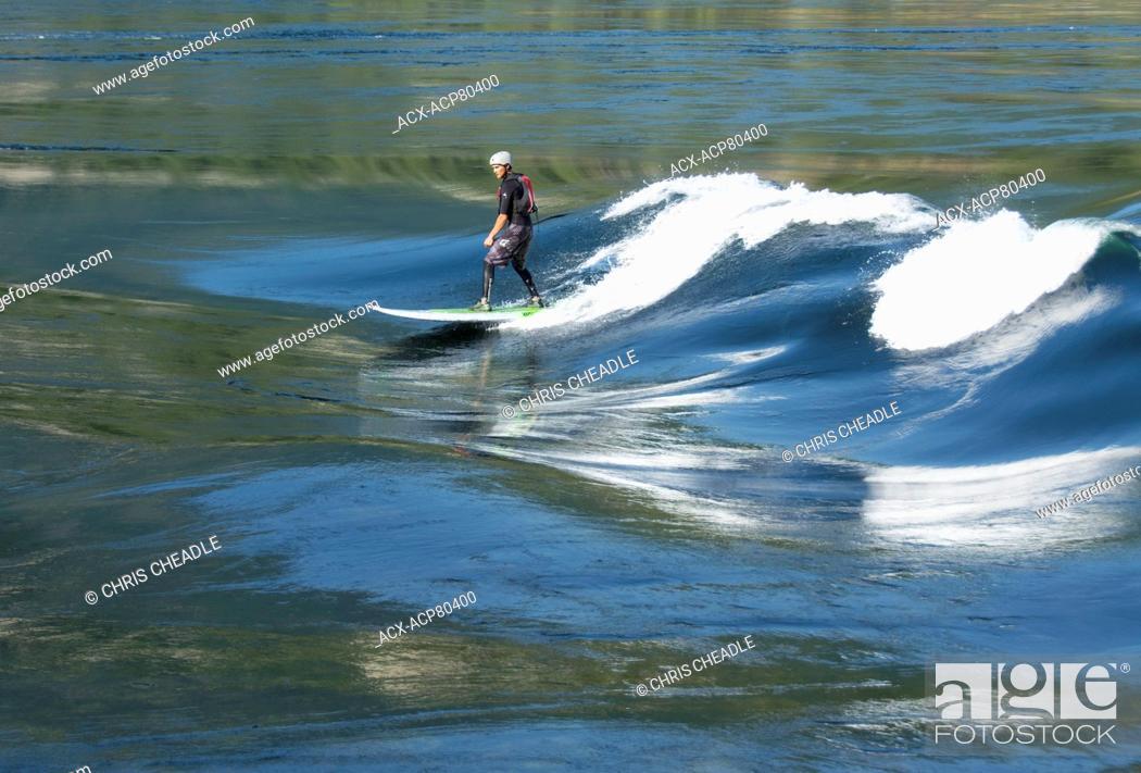 Stock Photo: stand up paddleboarder on flood tide at Skookumchuck Narrows, Sechelt Inlet, Sunshine Coast, British Columbia, Canada.