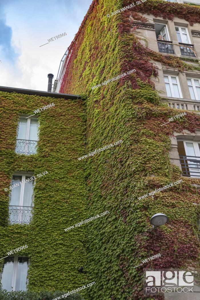 Stock Photo: Facade of building covered with ivy, Downtown Ourense, Galicia, Spain.