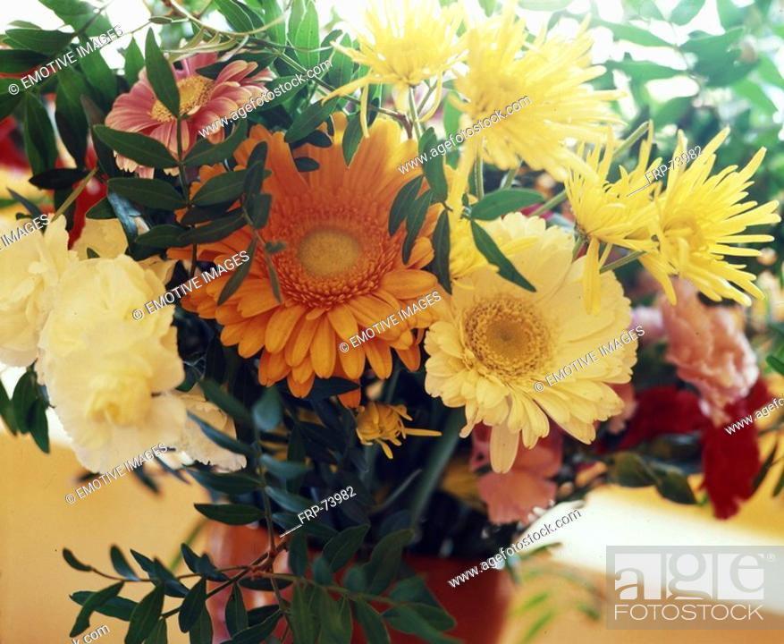 Stock Photo: Colourful bunch of flowers with gerbera and chrysatemum.