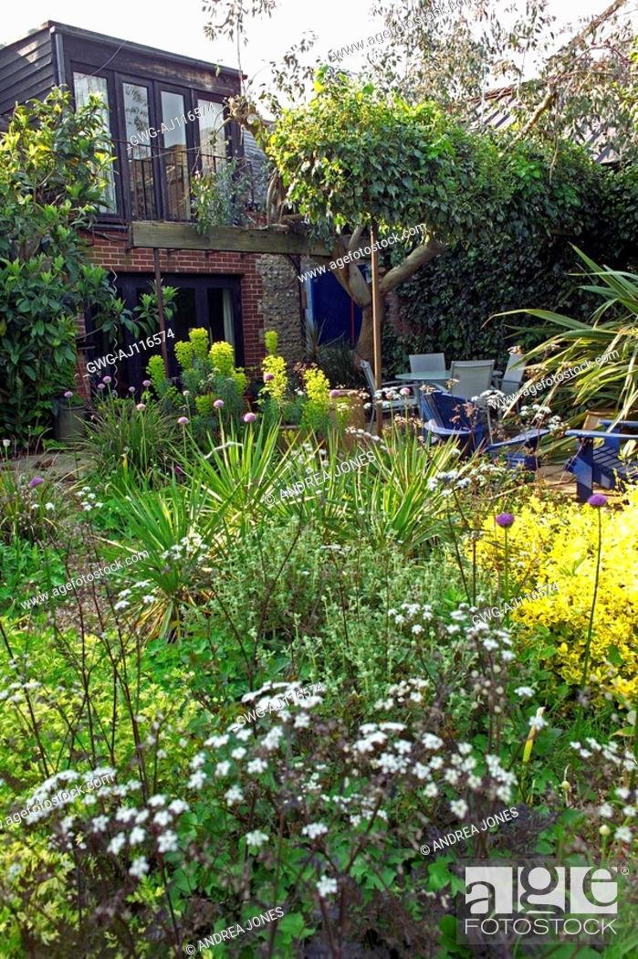 stock photo the clock house garden denmans garden design by john brookes - Garden Design John Brookes