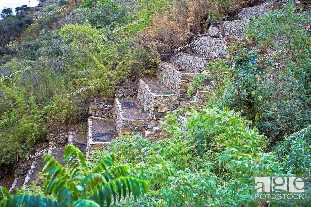 Stock Photo: Steps of an old ruin, Choquequirao, Inca, Cusco Region, Peru.