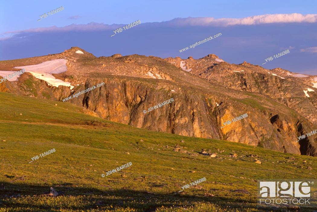 Stock Photo: Early morning light on tundra, view northwest from below Beartooth Pass, Beartooth Plateau, Shoshone National Forest, Wyoming, USA.