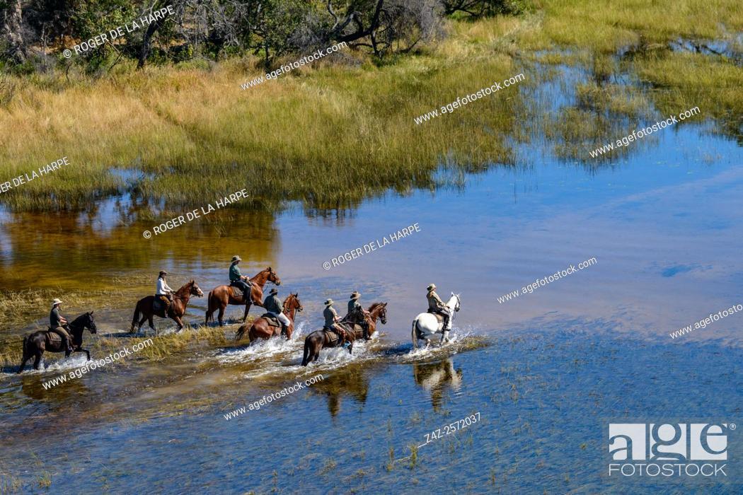 Imagen: Horseback riding safari with African Horseback Safaris. Okavango Delta. Botswana.