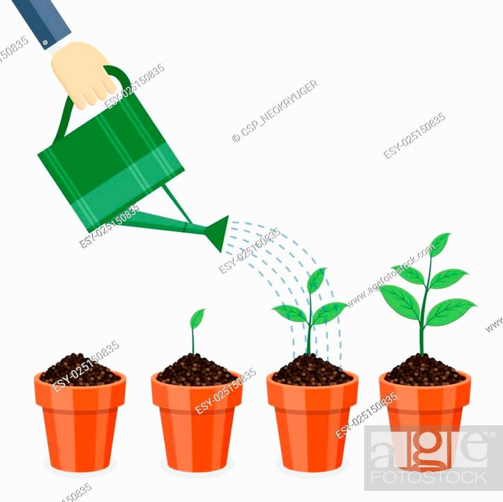 Stock Vector: Watering can and plants in pots.