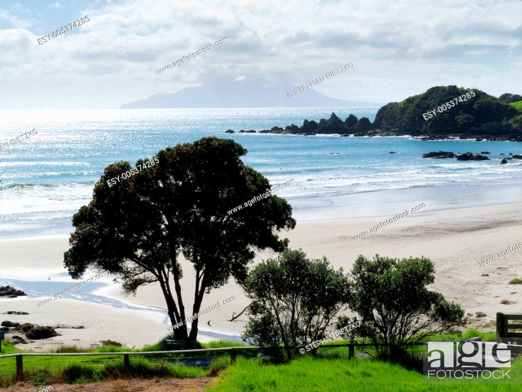 Stock Photo: Beautiful coastal landscape, Tawharanui, NZ.