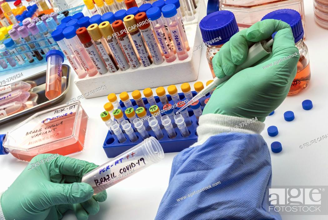 Imagen: Scientist holds vial of new Brazilian covid-19 strain in research, conceptual image.