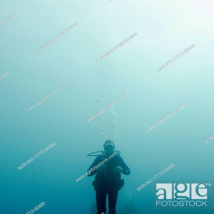 Stock Photo: Scuba diver underwater, Utila, Bay Islands, Honduras.