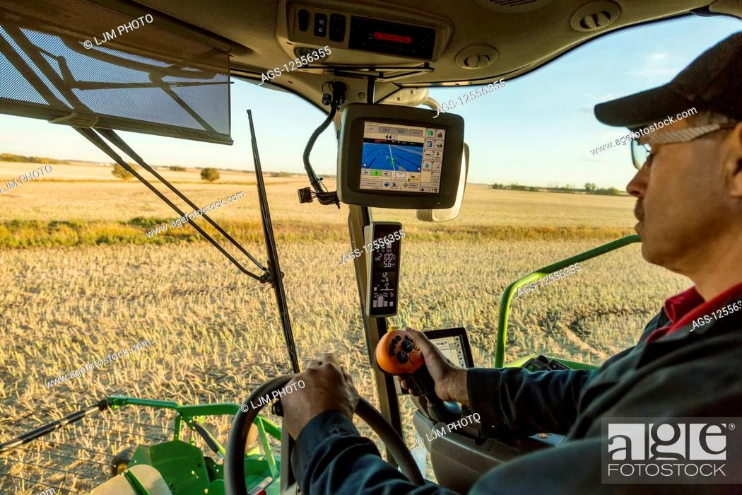 Stock Photo: A farmer in the cab of his combine harvesting Canola at sunset and using computer automation in his equipment; Legal, Alberta, Canada.