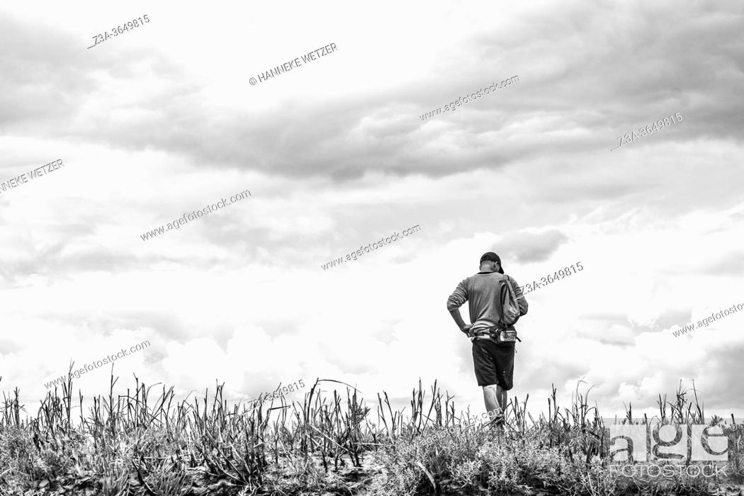 Photo de stock: Man exploring the official nature reserve area and swamp 'The Drowned Land of Saeftinghe' in the southwest Netherlands, located in eastern Zeelandic Flanders.