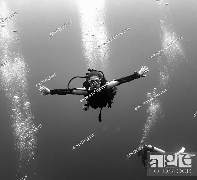 Stock Photo: Scuba divers at the Three Amigos Dive Site, Belize Barrier Reef; Belize.