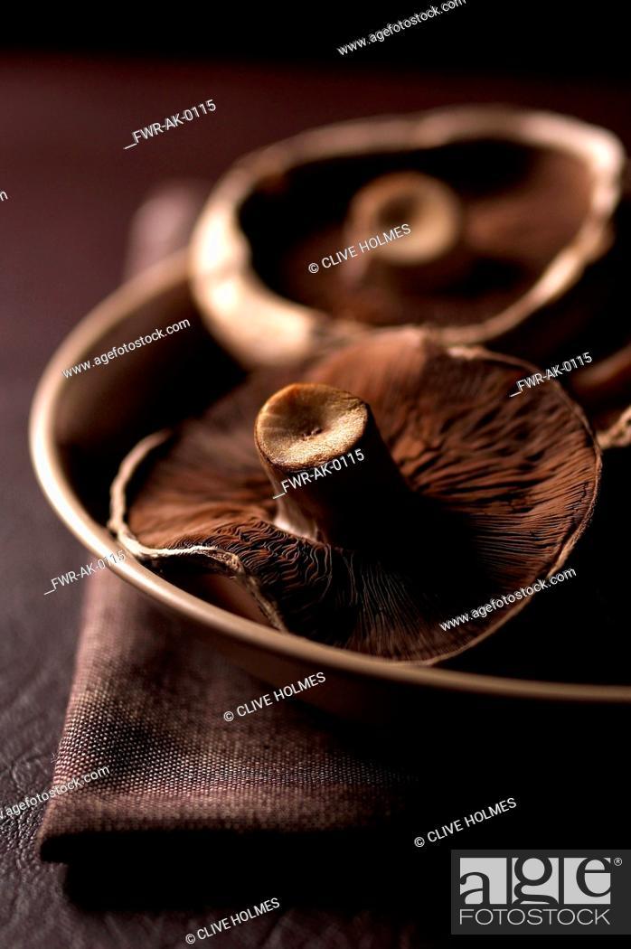 Imagen: Mushroom, Portobello mushroom, Psalliota bisporus, Studio shot of brown coloured fungi.