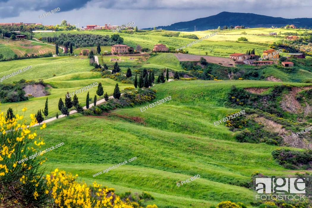 Stock Photo: Val d'Orcia in Tuscany.