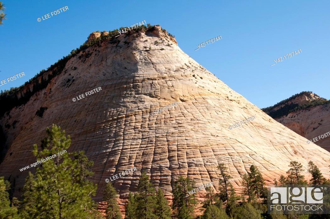 Stock Photo: USA Utah, Checkerboard Mesa in Zion National Park.