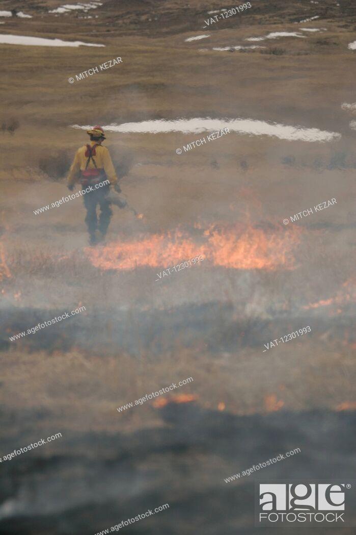 Imagen: Controlled Burn In Wildlife Management Area.