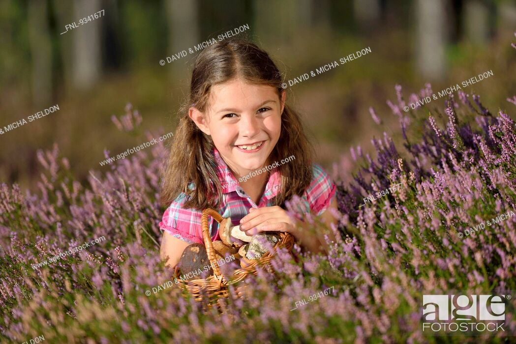 Stock Photo: Girl collecting mushrooms in a pine forest.