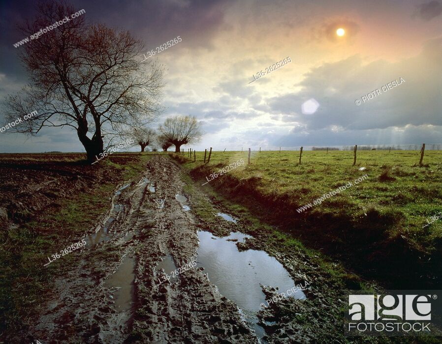 Stock Photo: Eastern Poland. A typical country road, now very seldom seen.