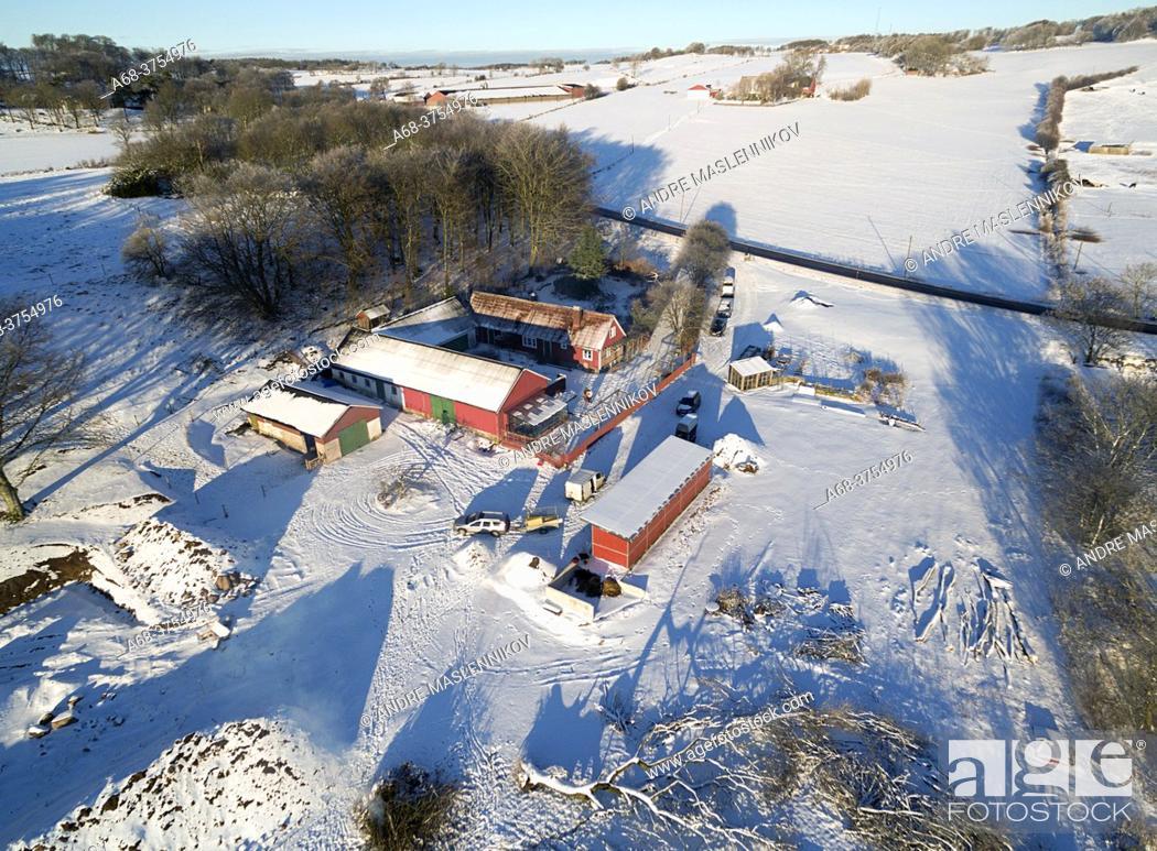 Stock Photo: Bjäre Peninsula. Horse farm in agricultural landscape in winter.