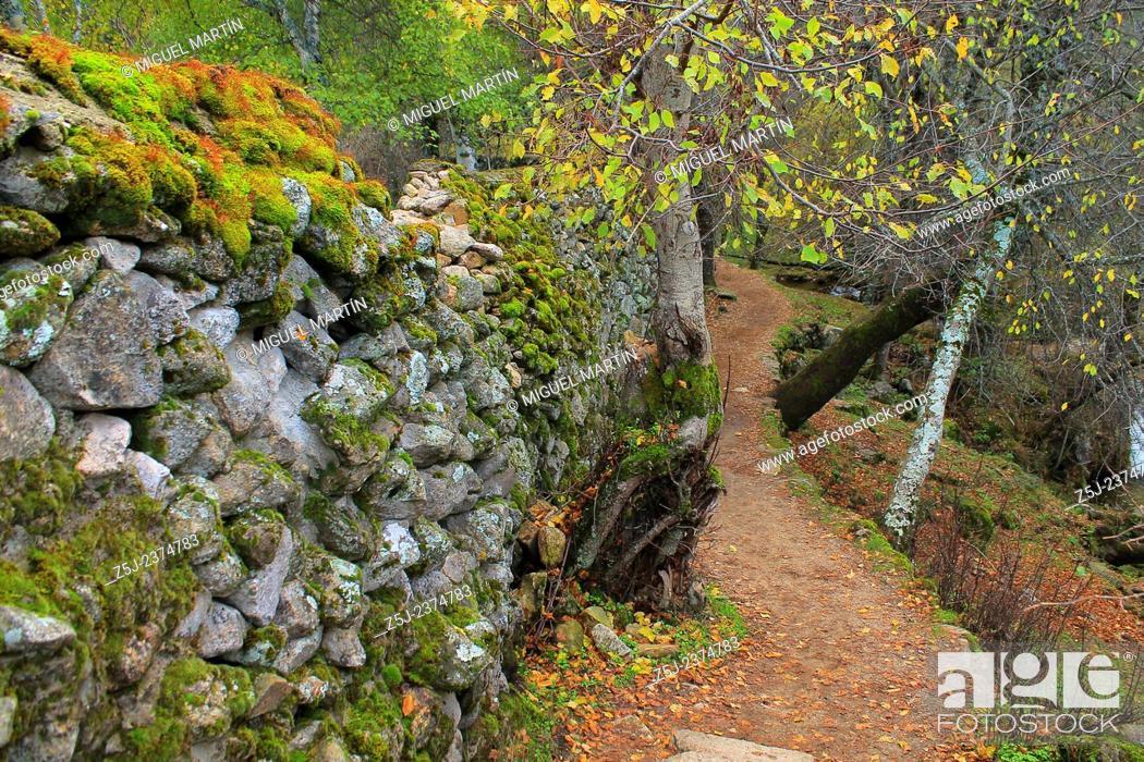 Stock Photo: A twisty path leads to the El Purgatorio falls, through the Aguilón river gorge in the high Lozoya Valley, Rascafría (Madrid).
