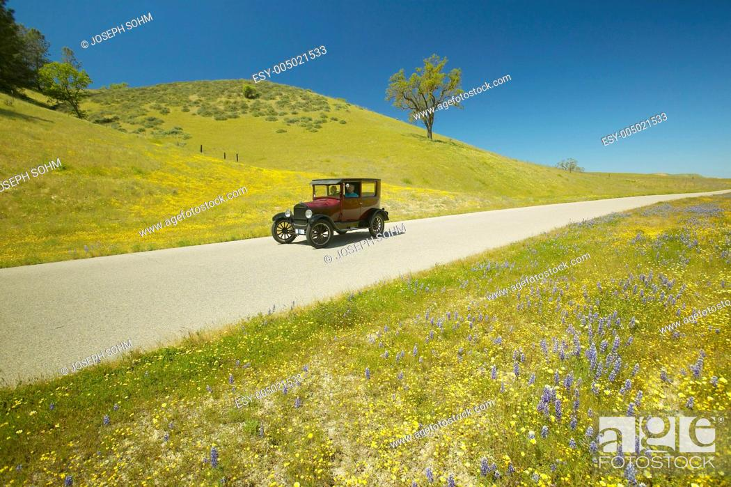 Stock Photo: A maroon Model T driving down a scenic road surrounded by spring flowers off of Route 58, Shell Road, CA.