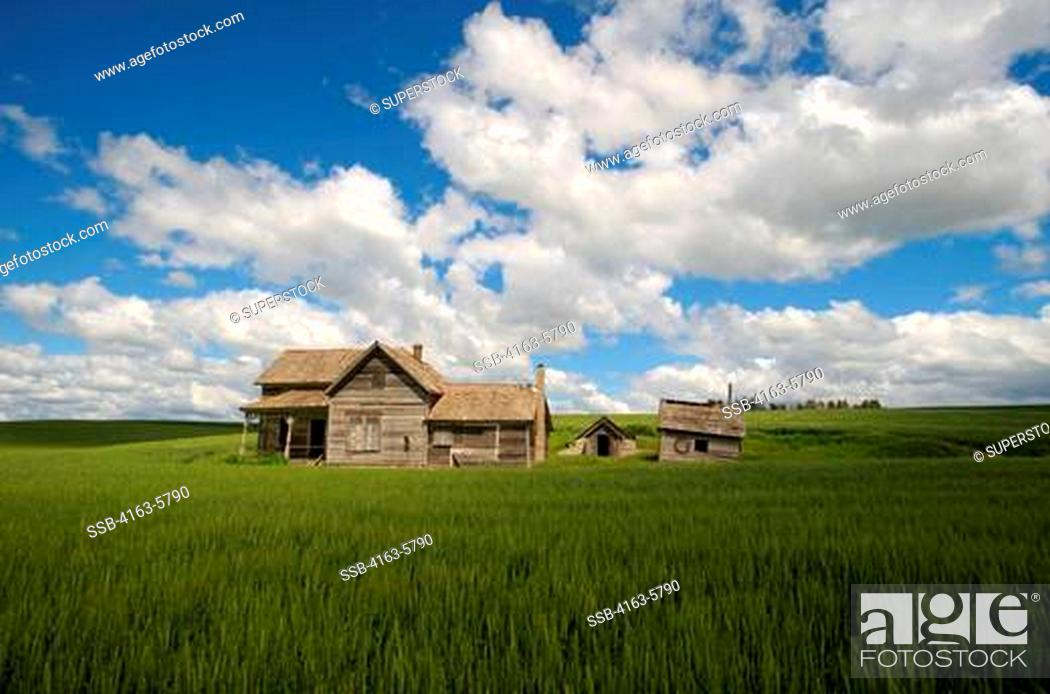 usa washington state palouse country near pullman abandoned farm house in wheat field stock photo picture and rights managed image pic ssb 4163 5790 agefotostock 2