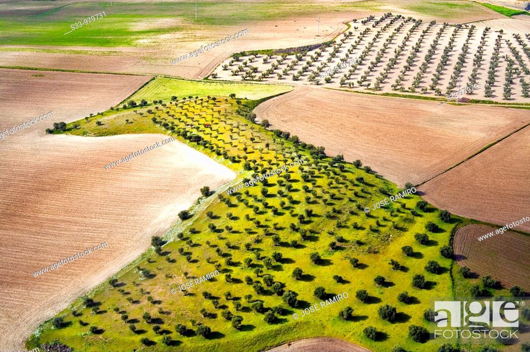 Stock Photo: Vista aerea de los campos de Pinto  Madrid  España.